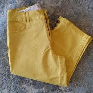 Stretch Capri Wide Waistband Cotton Pants Size 4